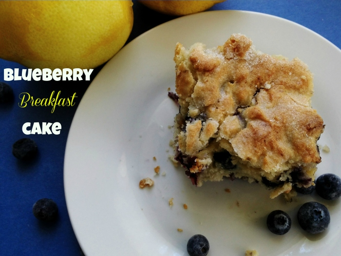 Blueberry Breakfast Cake