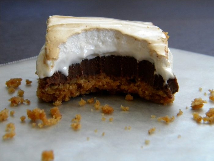 Smore's Fudge Bar Bite